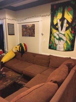 46 Center Street apartment living room