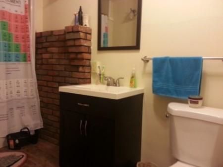 27 Cherry_bathroom